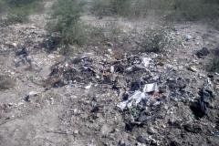 Roadside rubbish3 600