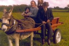 donkeycart dad 800a